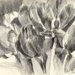 """Monochrome Tulip #3"" by makingamark"
