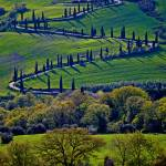 """""""The """"Z"""" in tuscany"""" by GregStringham"""
