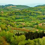 """Morning in Montepulciano"" by GregStringham"