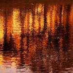 """""""Reflections"""" by annayanev"""