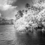 """Blue Springs - Infrared II"" by annayanev"