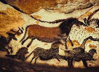 Bulls and Horses of Lascaux Cave