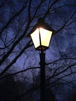 Vintage Lamp Post Lights The Night