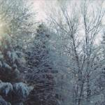 """Winter Scene Panoramic"" by MikeMBurkeDesigns"