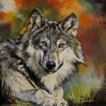 """Wolf"" by Kevinmeredith"