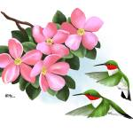 """Two Hummingbirds and Pink Flowers"" by waterart"
