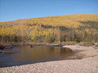 North Fork Chena River