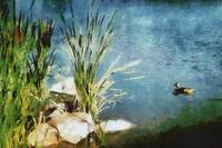 duck and cattails painting