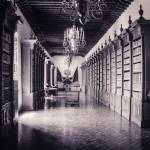 """Biblioteca en Zacatecas"" by abel_montesino"