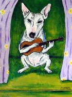 bullterrier guitaradj