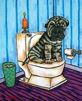 Shar Pei in the Bathroom