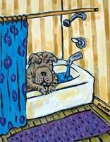 Shar Pei in the Bath Tub