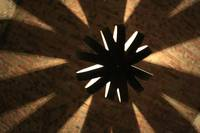 Winery star flower of light and shadows