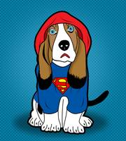 winter SUPERMAN dog