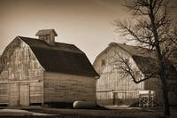 Two Iowa Barns