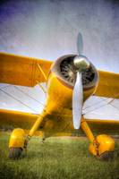 Yellow Stearman