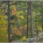 """Petit Jean State Park, Arkansas"" by TimFitzharris"