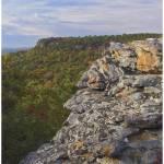 """Cedar Canyon, Petit Jean State park, Arkansas"" by TimFitzharris"