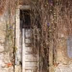 """""""charming ruins"""" by mbiwa"""
