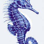 """blue vintage seahorse- left facing"" by pietrastone"