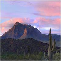 Picacho Mountains