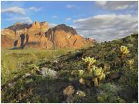 Kofa National Wildlife Refuge
