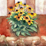 """Daisy Flowers Still Life"" by BlendaStudio"