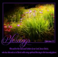blessings flowers