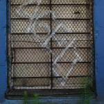 """Wire Mesh Window_3"" by rathompson"