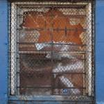 """Wire Mesh Window_1"" by rathompson"