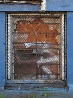 Wire Mesh Window_1