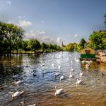 """The River Avon in Stratford Upon Avon"" by SteveWalton"