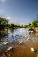 The River Avon in Stratford Upon Avon