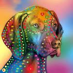 """German Shorthair Pointer copy"" by markashkenazi"