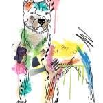 """""""dog"""" by markashkenazi"""