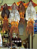 Giant Squid For Sale