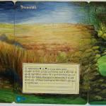 """Savannah Panorama"" by jenndelfs"