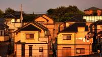 Suburban Houses At Sunset