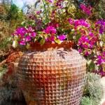 """planter texture"" by lizmix"