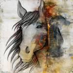 """""""horse"""" by markashkenazi"""