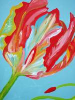 Fringed - detail, closed tulip