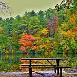 """The Autumn Picnic Table"" by RickTodaro"