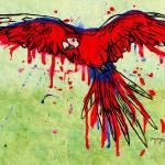 """Scarlet Macaw"" by depaula"
