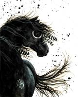 Black Stallion Sprit Horse