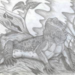 """Bearded Dragon"" by LizardSpiritArt"