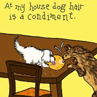 Dog Hair as a Condiment