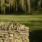 """""""_DSC8898 Stone Fence"""" by CooperSlay"""