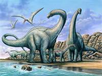 Apatosaurus group on beach