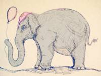 Elephant in the Circus