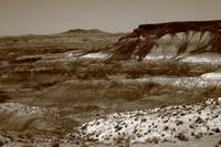 Painted Desert Arizona 2008 #5 Sepia